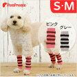 【ポンポリース】レッグガード シンプルボーダー S・Mサイズ /犬 小型犬 靴下