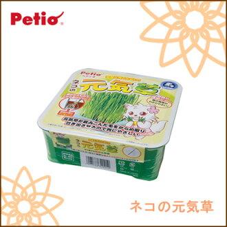 Petio /petio 貓咪健康的草 / 5000 日元或以上的狗草貓貓草和貓草 / 狗護理 / 所有年齡段 /。