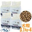 ナチュラルハーベスト/メンテナンス/ 3.1kg×4袋/Natural Harvest//送料無料/あす楽対応/