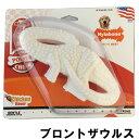 ナイラボーン デンタルダイナソー 恐竜 ブロントザウルス Nylabone 5000円以上で送料無料 あす楽対応 犬 おもちゃ