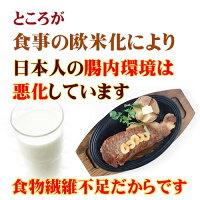 食事の欧米化により日本人の腸内環境は変化しています