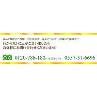 電話番号【サポート案内】
