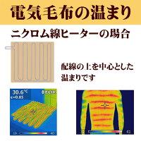 7.サーモグラフィーでみる電気毛布の温まり