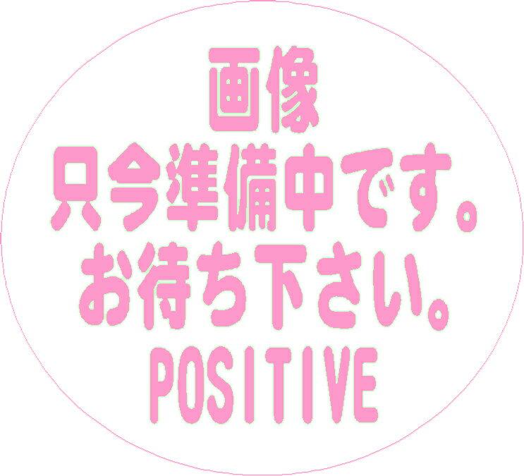 チェロ用アクセサリー・パーツ, 弓 Suzuki No.3027 44110
