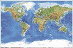世界地図 Planetary Visions ポスター(100904)