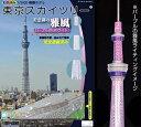 プラモデル 彩色済み情景モデル 1/3000 東京スカイツリー 完全塗装済 童友社