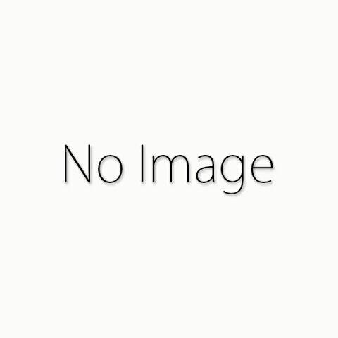アイドロン 1/18 ランボルギーニ ウラカン ペルフォルマンテ 2017 マットパールオレンジ 完成品ミニカー EML008A