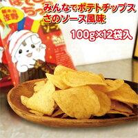 【送料無料】みんなでポテトチップスさのソース風味100g×12袋