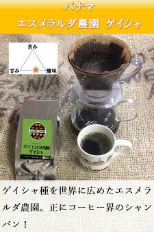 【ポティエコーヒー】パナマエスメラルダ農園ゲイシャ300g
