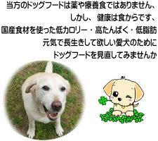 犬の健康を考える2