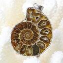 アンモナイト ペンダント|Ammonite 化石 Ammon...
