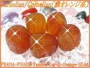 天然石パワーストーンタンブルカーネリアン(紅玉髄) 濃オレンジ系・最上...
