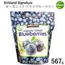 2020オーガニック ドライブルーベリー 567g 大容量カークランドシグネチャーKirkland Signature Organic Dried Blueberries有機 トッピング シリアル ヨーグルト【smtb-ms】0937184