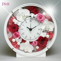 花時計胡蝶蘭ピンク