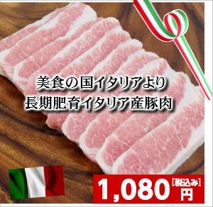 イタリア産豚トロ 豚とろ とんとろ トントロ 焼肉 バーベキュー BBQ バーベキュー