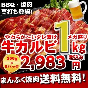 焼肉カルビジューシースライス バーベキュー 焼肉02P23Sep15焼肉カルビジューシースライス バ...