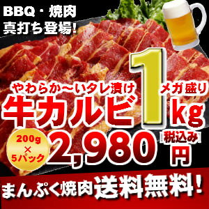 02P05Dec15焼肉カルビジューシースライス バーベキュー 焼肉