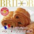 フランス ブリドール社製ミニAOPバター パン オ ショコラ4個