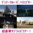 【記念日、誕生日サプライズツアー】ディナークルーズ、ヘリコプター遊覧で夜は満喫!横浜〜東京高級ハイヤー貸切で嗜好の旅を!【社員旅行、慰安旅行、親睦会、懇親会等にも】