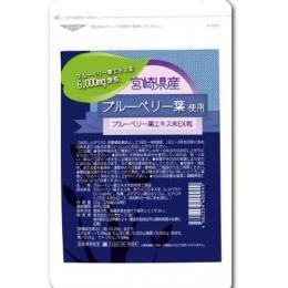 健康維持, ブルーベリーエキス配合  EX16000mg10P23Sep15fs04gmRCP