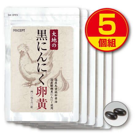 【送料無料】大地の黒にんにく卵黄(5個組)