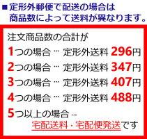 【あす楽】定形外なら送料290円〜資生堂マキアージュドラマティックルースパウダー用パフ『0』