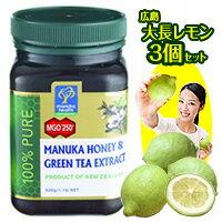 送料無料 マヌカハニー MGO 250+ (UMF16+相当) 緑茶抽出成分配合 500g に有機栽培、低農薬の広...