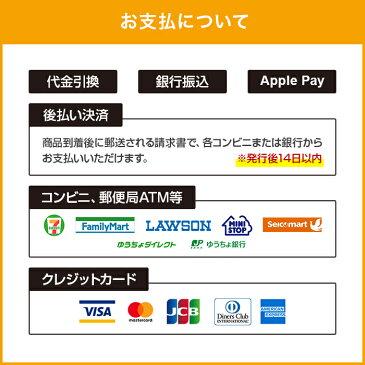 【10%OFFクーポン配布中】プリンストン USBフラッシュメモリー Xiao Jr.2 ・32GB ・全4色 ・USB 2.0 ・キャップ付き PFU-XJ2/32G 在庫処分 特価