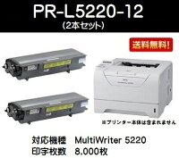 NECトナーカートリッジPR-L5220-12お買い得2本セット【純正品】【翌営業日出荷】【送料無料】【MultiWriter5220N】