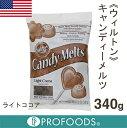 《ウィルトン》キャンディメルツ(ライトココア)【340g】