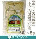 【クール便発送商品】《ホシノ天然酵母》ホシノ丹沢酵母パン種【250g(50g×5袋)】 02P10Jan15