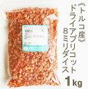 ドライアプリコットダイス【1kg】
