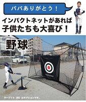 野球ネット