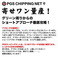 PGSチッピングネット【アプローチ練習ネット室内でゴルフ練習に】