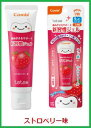 ◆Combi(コンビ)テテオ 歯みがきサポート 新習慣ジェル30g【ス...