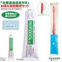 歯周病 歯磨き粉 プロポリス配合 歯磨き粉<プロポデンタル ...