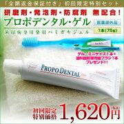 プロポデンタル・ゲル 歯槽膿漏 歯磨き粉