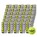 【365日出荷】「あす楽対応」DUNLOP(ダンロップ)「FORT(フォート)[2個入]1箱(30缶/60球)」テニス...