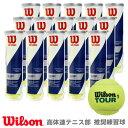 【365日出荷】「あす楽対応」Wilson(ウイルソン)「TOUR STANDARD(ツアー・スタンダード) 1箱(15缶) ...