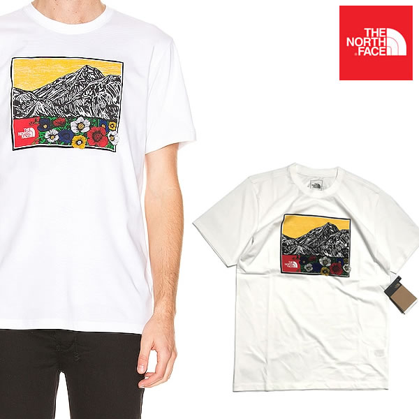 ノースフェイスUSAモデルメンズヒマラヤンソースTシャツTheNorthFaceHimalayanSourceT-Shirt 9