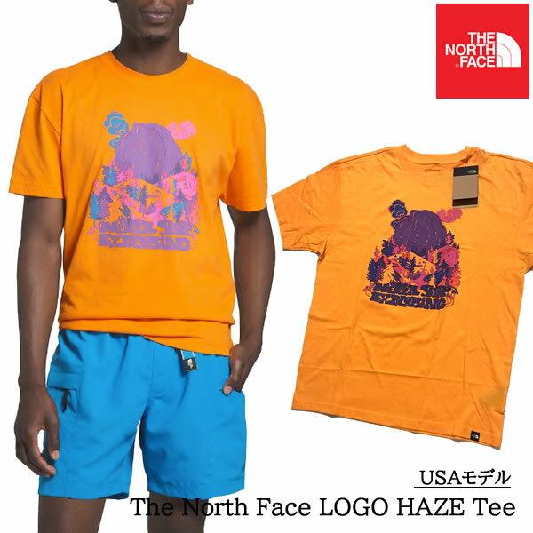 4/30迄の売切プライス ノースフェイスUSAモデルロゴTシャツ半袖TheNorthFaceLogoHazeT-Shirt 9