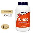 ビタミンB-100 250粒 約8ヶ月分 NOW Foods(ナウフーズ)B群10種 葉酸 ナイアシン ビオチン パントテン酸 PABA コリン イノシトール[お得サイズ]