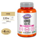 [送料無料]HMB 500mg 120粒 NOW Foods(ナウフーズ) カプセル サプリメント サプリ その1