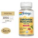 SOLARAY クロミウムピコリネート 1000mcg 100粒