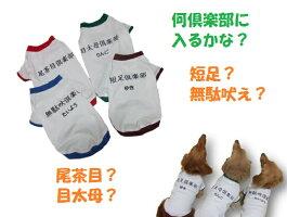 倶楽部服(体操服)