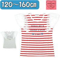 メール便可能キッズ半袖tシャツ120cm-160cm女の子ガールボーダーレイヤードショートスリーブ半袖TシャツCHEERGIRLap-5393950-5412517