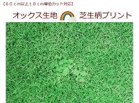 オックス生地【60cm以上から購入可能、10cm単位カットOK】芝生柄カバーリング/小物作り芝生でゴロン♪(1332)