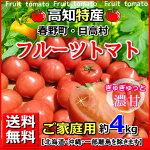 全国送料無料・高知産フルーツトマト4kgご家庭用