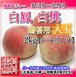 【送料無料】香川山梨長野産大玉桃約2キロ贈答5から6玉入り05P18Jun16