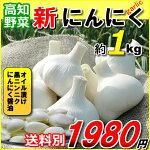 高知産・新物にんにく芋・1kg入り【送料別途必要】